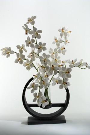 Vanda Orchids In Glass Vase Set On Art Deco Stand Boulevard Urban