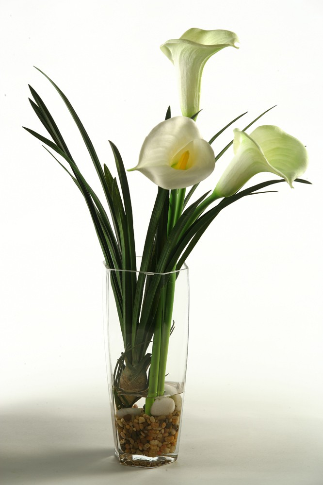 Calla Lilies In Glass Vase Boulevard Urban Living